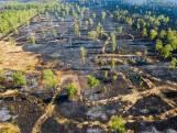 Onderzoek naar brandstichting Peel levert nog niets op, 800 hectare natuurgebied vernietigd