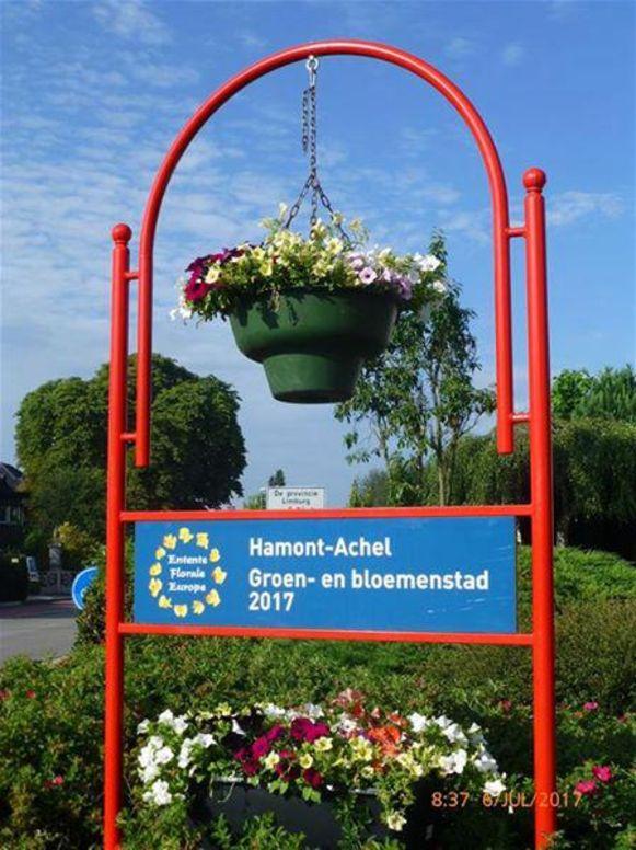 Bloemen staan al jaren centraal in Hamont-Achel.