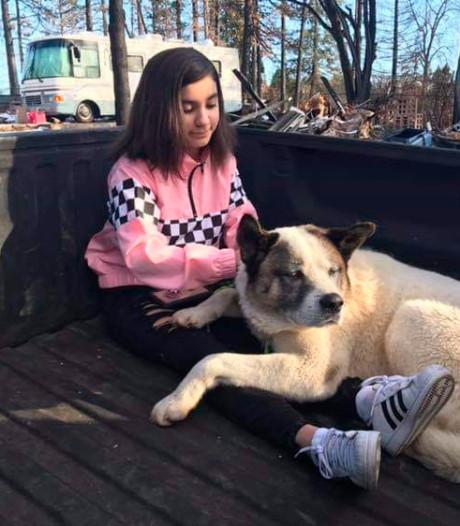 Vermiste hond na 101 dagen terug bij zijn baasjes