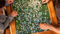 Waarom we in coronatijden massaal puzzelen tegen de verveling