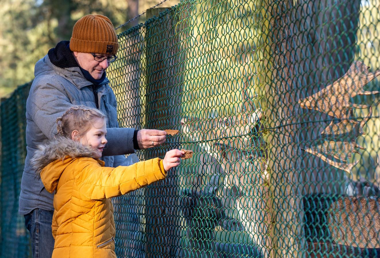 Hertenkamp Epe gaat op de schop. Robbert van Zuidam en dochter Jade voeren de damherten.