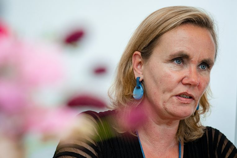 Vlaams minister-president Liesbeth Homans (N-VA).