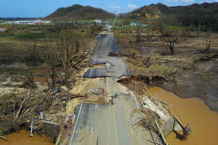 Puerto Rico Beeld afp