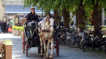 Ritje met paardenkoets wordt wéér duurder: 55 euro vanaf 2020