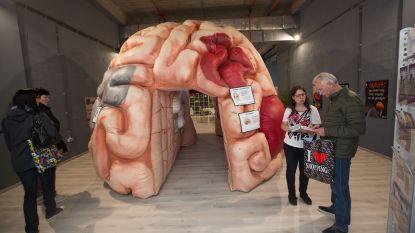 Reuzenbrein geeft info over niet-aangeboren hersenletsels