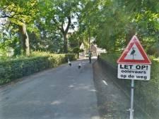 'Let op, ooievaars op de weg!' waarschuwen gloednieuwe verkeersborden die in Oss zijn gemaakt