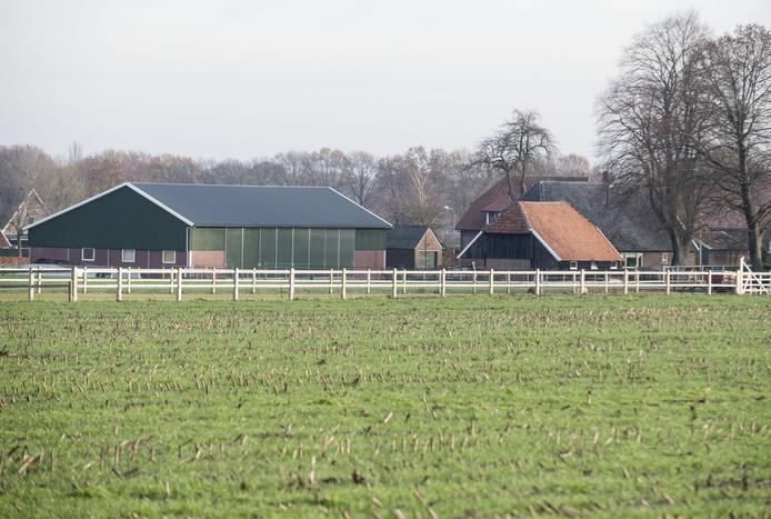 De locatie aan de Diepenheimseweg in Neede/Lochuizen waarvoor een Noordijker ondernemer een bouwplan heeft ingediend waar buurtbewoners tegen protesteren.