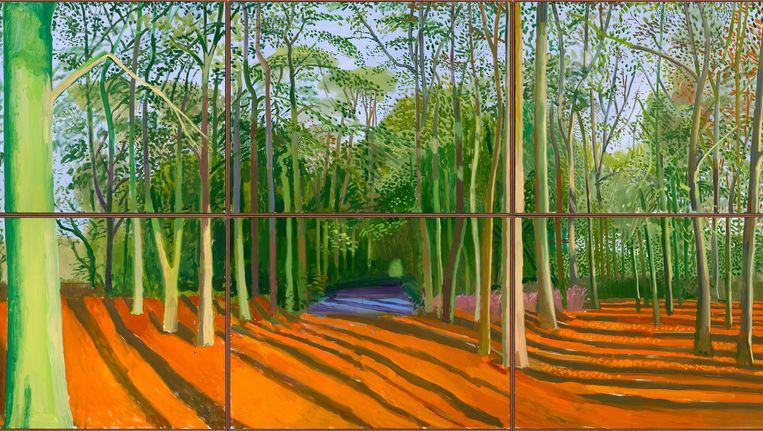 Woldgate Woods, 6 & 9 November 2006. Beeld David Hockney