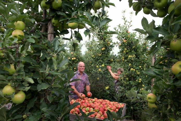 Ferdinand en Lidy van Schip in hun boomgaard in Tolkamer. Foto Theo Kock