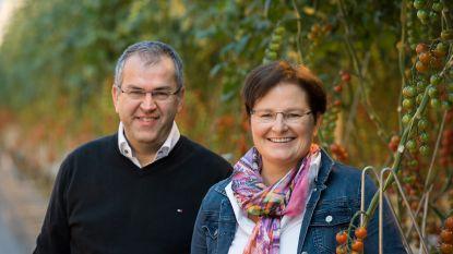 Tomatenkweker Lauwerysen-Krijnen krijgt als eerste certificaat 'Planetproof'