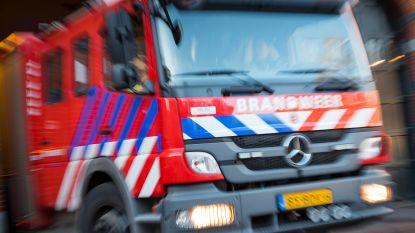 Jongetje (7) klimt in pyjama uit raam om ouders te zoeken, brandweer redt hem van richel