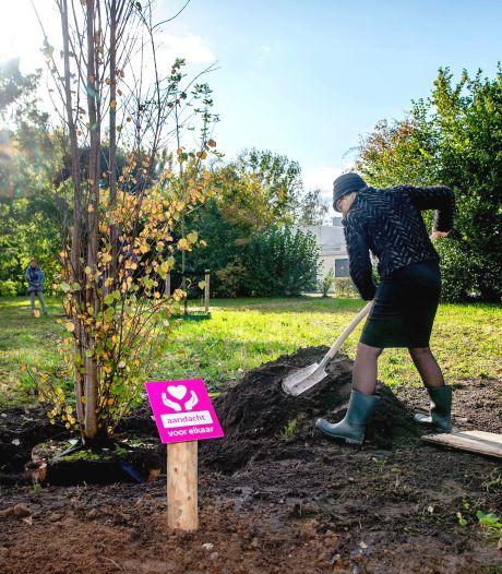 Wijchense burgemeester biedt 'coronaboom' vaste grond