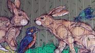 Kunstenaar Dzia beschildert ecoduct Konijnenpijp