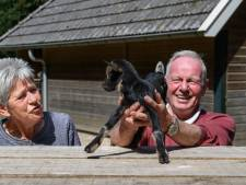 Gerrie leeft voort in de geitjes die ze redde in het hertenkamp in Neede