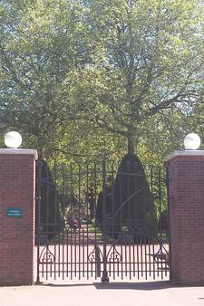 Vazen op graf van Sandra's zoon in Winterswijk foetsie: 'Respectloos'