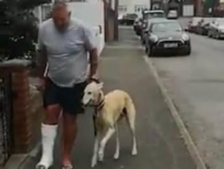 Baasje breekt enkel en belandt in gips, hond mankt mee om hem hart onder de riem te steken