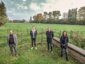 """Gemeente Heuvelland koopt landbouwgrond in Westouter die moet dienen als groene randparking: """"Het dorp zal niet langer in twee gesneden zijn door de weides"""""""