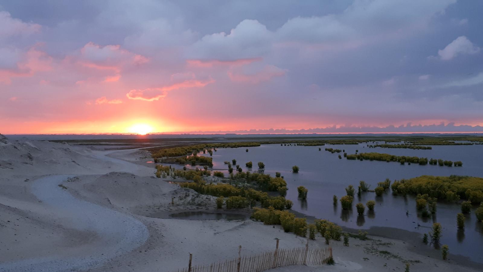 Een van de vijf eilanden van de Marker Wadden is toegankelijk voor publiek, de andere vier eilanden zijn voor de natuur. Het is in 2016 gestart op initiatief van Natuurmonumenten en Rijkswaterstaat. Doel van het project is ecologisch herstel door verbetering van de bodem- en waterkwaliteit.