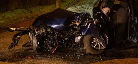 Achttienjarige zonder rijbewijs zwaargewond nadat hij met auto tegen boom rijdt in Willemstad