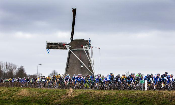 De jubileumeditie van de Ster van Zwolle (60ste) mag zich verheugen op een sterk en talentvol deelnemersveld.