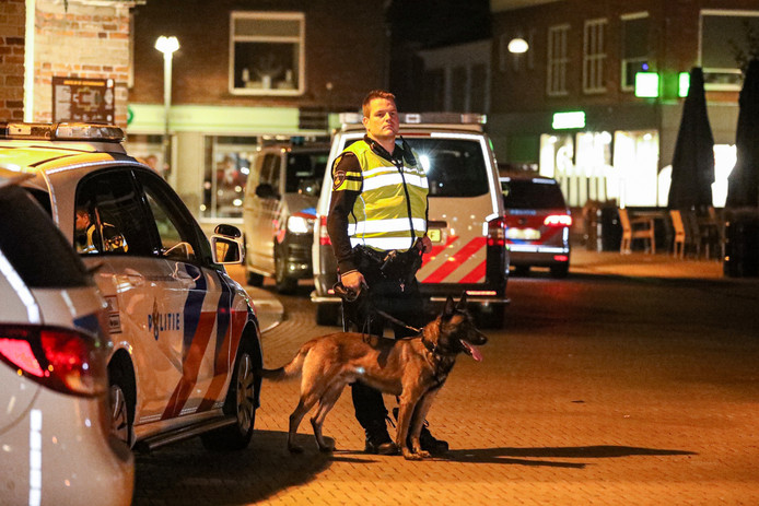 Veel politieinzet bij massale vechtpartij Doetinchem