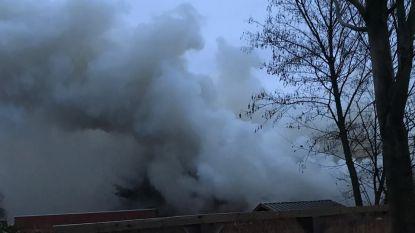 """Heideschutters: """"Blij dat we zelf uit brandend gebouw zijn geraakt"""""""