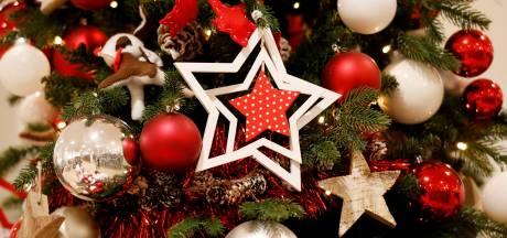 Betrapt bij stelen kerstdecoratie: 'Voor een vrouwtje dat bij mij was'