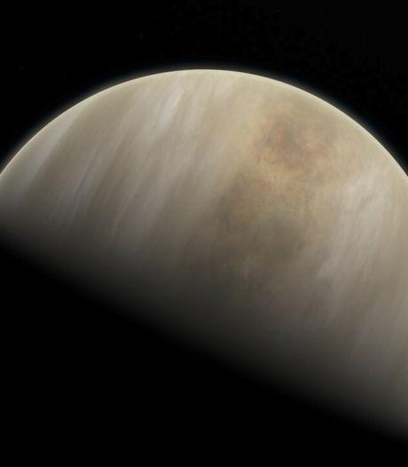 Une forme de vie sur Vénus?