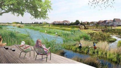 """Grondbezitters in Knokke-Heist trekken naar Raad van State: """"Onze bouwgrond wordt landbouwgebied, ten voordele van de familie Lippens"""""""