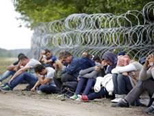 Strenger regime Hongarije: 174 'illegalen' opgepakt
