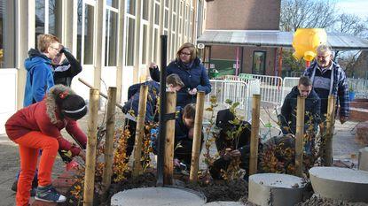 Leerlingen helpen groene speelplaats aan te leggen