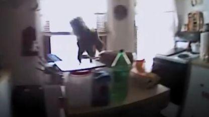 Tijdens interventie worden agenten aangevallen door verbluffende 'kamikaze'