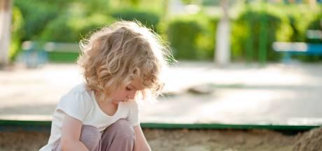 Speelveldje zorgt voor beroering in Rozendaal: 'De gezelligheid is in de wijk nu ver te zoeken'