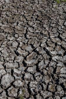 Droogte in Salland: geen water meer halen uit sloten Kolkwetering bij Heino