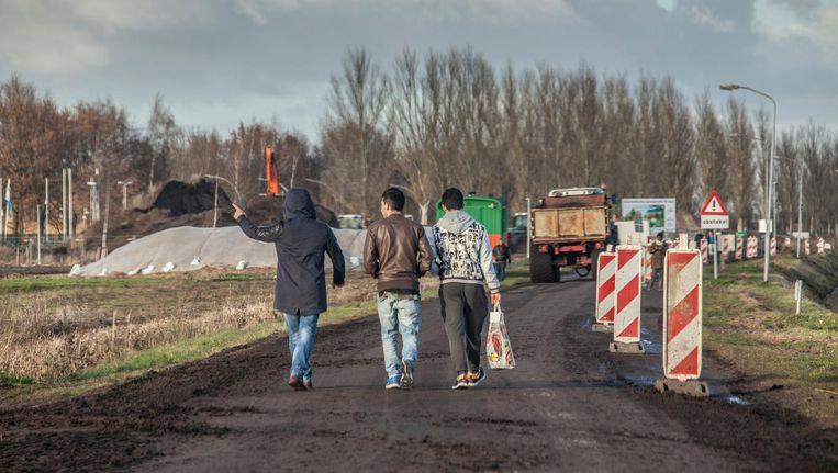Statushouders bij de opvang in Ter Apel. Beeld Harry Cock / de Volkskrant