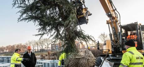 Molenstraat Zundert krijgt bomen van eigen bodem