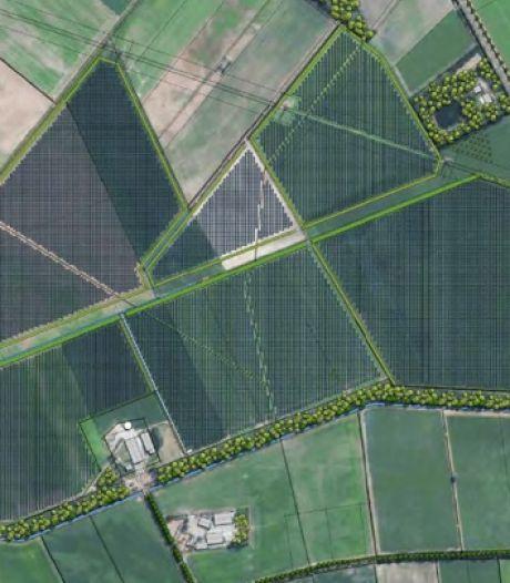 Zonnepark in Budel; niet 50 maar 57 hectare zonnepanelen
