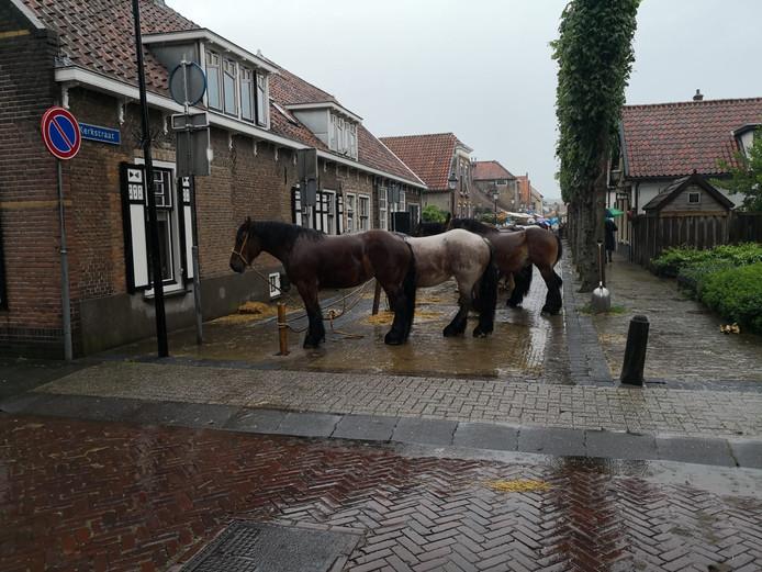 Paardenmarkt Numansdorp