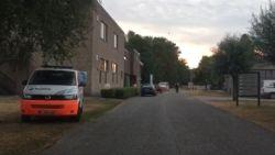 Massale zoekactie naar vermiste vijftiger in vijver Hazewinkel in Willebroek