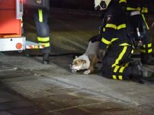 Brand in appartementencomplex in Breda, verdachte 'rook naar benzine'