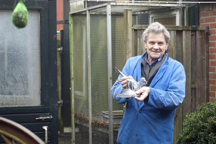 """Duivenmelker Henk Dannenberg: """"Mijn buren hebben nog nooit geklaagd dat mijn duiven op hun was poepen. Je moet wat van elkaar kunnen verdragen."""" Foto: Liselotte Kolthof"""