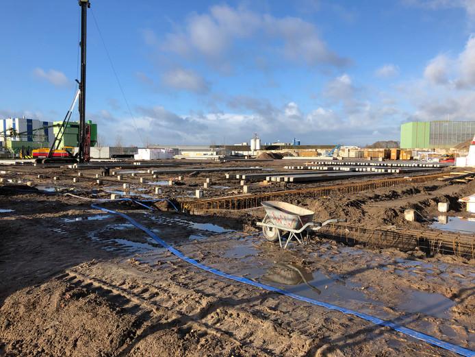 Honderden heipalen zijn de grond ingeslagen op de voormalige vuilstortlocatie aan de Westfalenstraat, om er een nieuwe, bijna 20 miljoen euro kostende milieustraat voor afvalverwerker Circulus-Berkel te kunnen dragen.