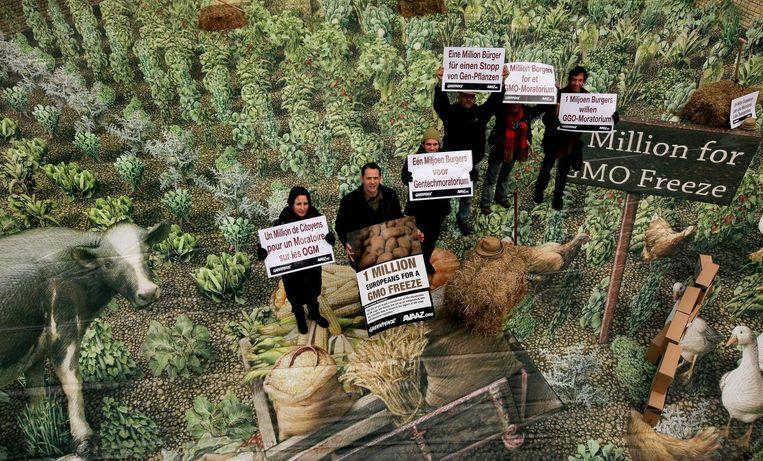 Greenpeace voert actie tegen gemodificeerd voedsel. Beeld afp