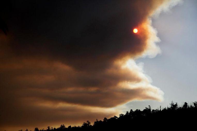 Rook boven een gebied waar grote stukken bos in brand staan