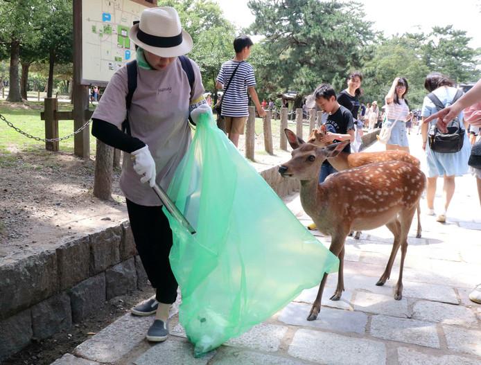 Een vrijwilliger ruimt plastic op in het bekende Japanse Nara Park.