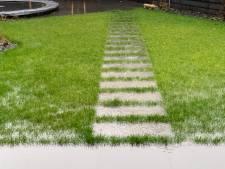 Regenwormen en scheuren houden de tuin droog in nieuwe wijk Harderweide in Harderwijk