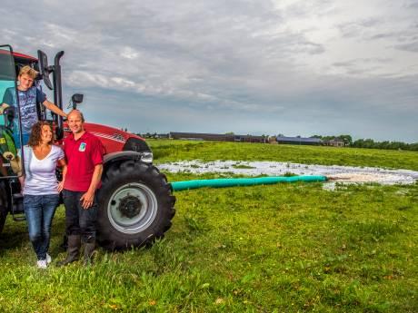 Nog meer natuur op de boerderij: boeren in het Groene Hart krijgen geld voor vogels in de wei