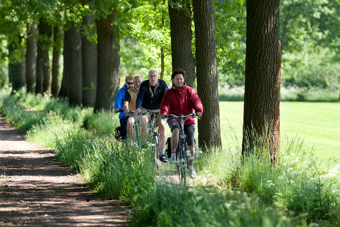 Fietsen door het buitengebied van Winterswijk.