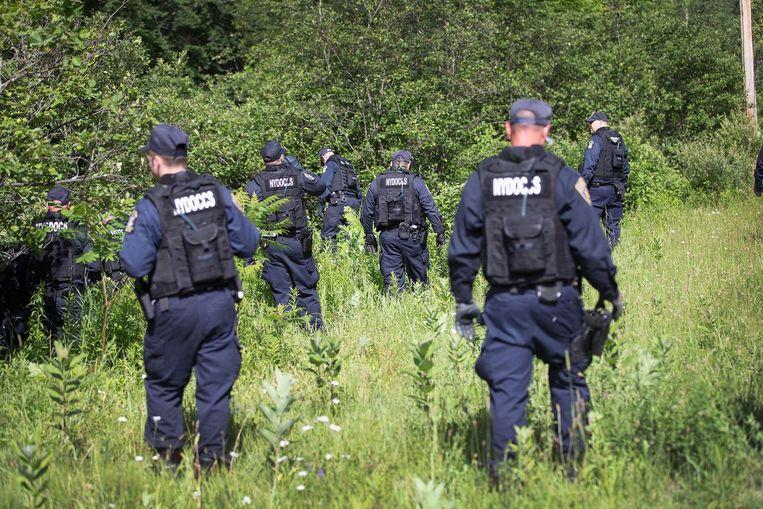 Gevangenisbewakers doorzoeken de bossen. Beeld afp