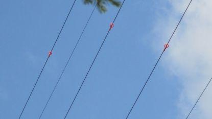 Hoogspanningskabels uitgerust met 670 'vogelkrullen'